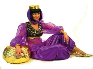 Bauchtanzerin Haremsdame Orient Tanzerin Karneval Fasching Untersch