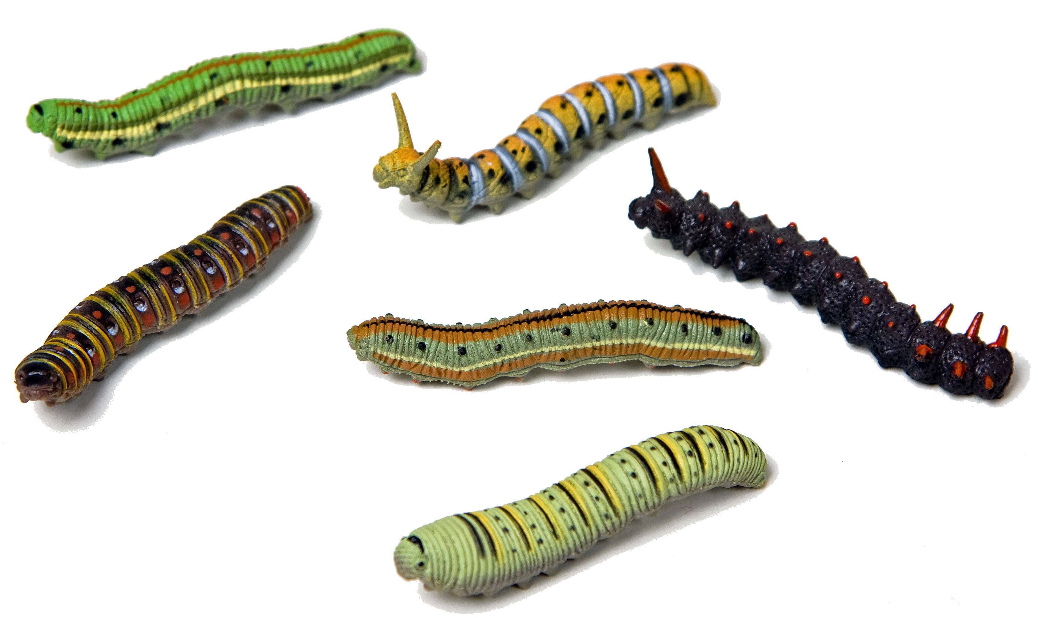 6 st ck raupen insekten krabbeltier dekoration deko for Dekoration 70iger jahre